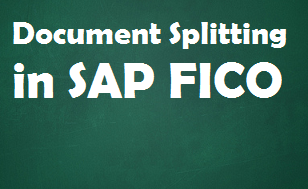 Document Splitting in SAP FICO - New GL Concept