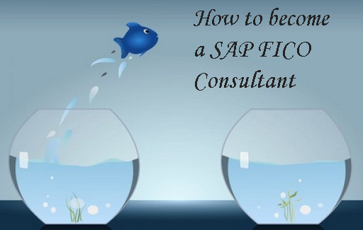 How to become a SAP FICO consultant