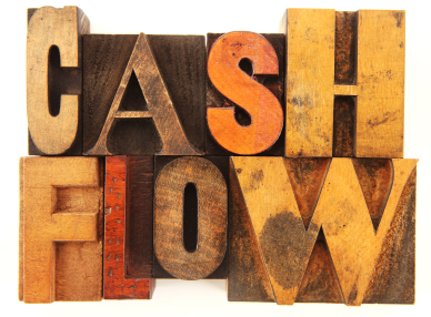 cash flow statement for private limited company